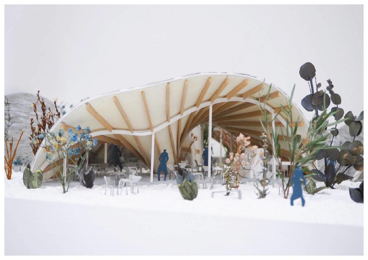 軌跡の洞窟 -ねじれた線織面による曲面建築の提案--19